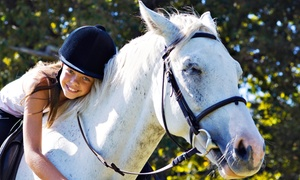 Hunter Valley Riding Academy: Two one-hour Horseback-Riding Lessons; optional extra lesson at Hunter Valley Riding Academy (Up to 51% Off)