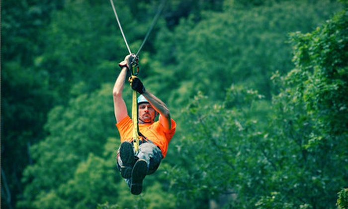 Grafton Zipline Adventures - Grafton: Two-Hour Zipline Tour for One, Two, or Four at Grafton Zipline Adventures and Aerie's Winery (Up to 52% Off)