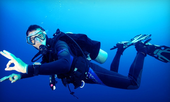 Grove Scuba - Coconut Grove: PADI Open-Water, Advanced Open-Water, or Rescue-Diver Class or Underwater Photo Class at Grove Scuba (Up to 51% Off)