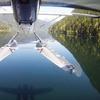51% Off Glacier Flight Tour in Langley