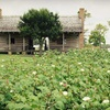 Up to 58% Off at George Ranch Historical Park