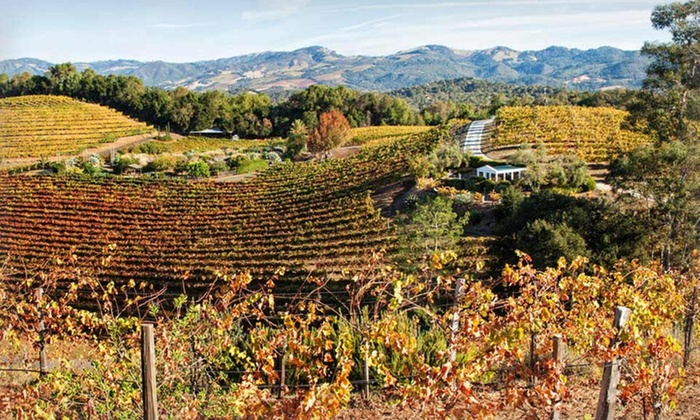 Jack London Lodge - Sonoma Valley, CA: 1-Night Stay with Wine Tastings at Jack London Lodge in Sonoma Valley, CA. Valid for Check-In Sunday–Thursday.