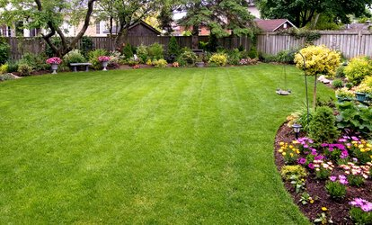 image for $28 for $50 Worth of Lawn and Garden Care — P.L.A property services