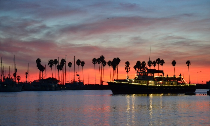San Diego Whale Watch - San Diego : Holiday Cruise for One, Two, or Four from San Diego Whale Watch (Up to 54% Off)