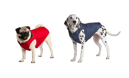 Animal Planet Puffy Dog Jackets