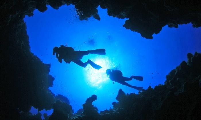 Diving Rosa Dei Venti - DIVING ROSA DEI VENTI presso Dive Blu Bari: Corso di sub Scuba Diver con teoria e immersioni in mare (sconto fino a 78%)