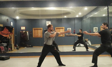 Four Weeks of Unlimited Martial Arts Classes at Northside Bujinkan Dojo (71% Off)