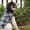$11.99 for an Outdoor Dog Adirondack Jacket