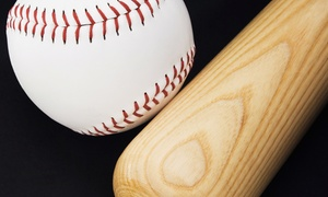 HOBO Sports Academy: One- or Two-Hour Hitting or Pitching Lesson for Two at HOBO Sports Academy (Up to 61% Off)