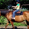 Half Off Horseback-Riding Sessions