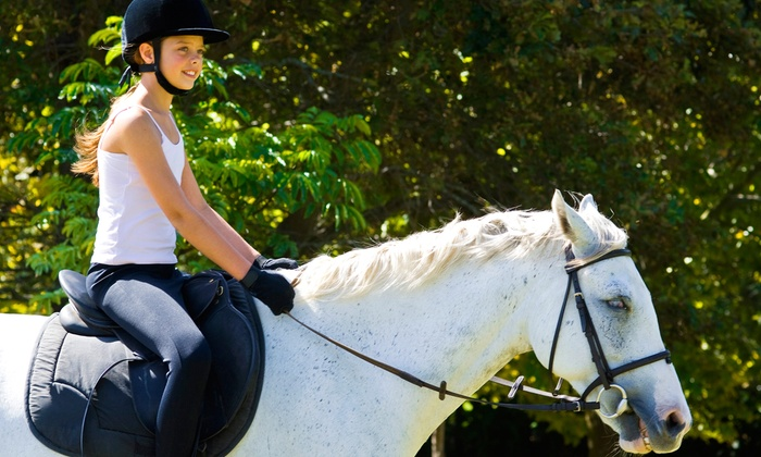 Sol Events - Clyde: One or Three Horseback-Riding Lessons for Up to Two at Sol Events (Up to 54% Off)