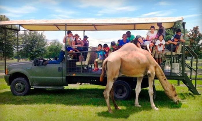 Safari Wilderness Ranch - Lakeland: Safari Ride for Two or Four at Safari Wilderness Ranch (Up to 68% Off)