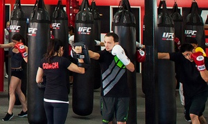 UFC Gym: Two-Week Membership or One-Month Membership with Personal Training Session at UFC Gym (Up to 81% Off)
