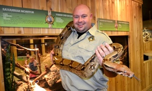 Little Ray's Reptiles: Admission for Two or Family of Four, or Birthday Party Package at Little Ray's Reptile Zoo (Up to 60% Off)