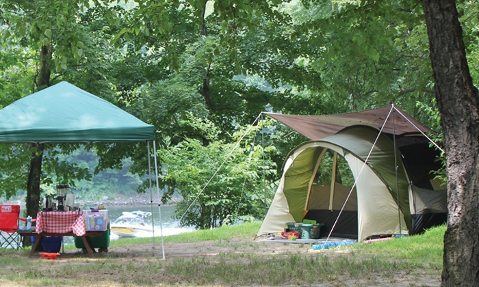 Delaware River Family Campground - Delaware: Two- or Three-Night Campsite with Firewood and Ice at Delaware River Family Campground (Up to 53% Off)