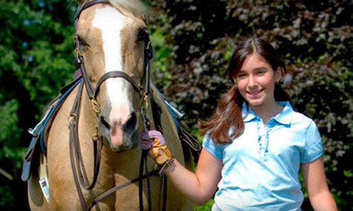Kierson Farm - Kierson Farm: Two, Four, or Six Private Horseback-Riding Lessons at Kierson Farm (Up to 69% Off)