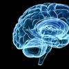 Up to 57% Off Neurological Rehabilitation