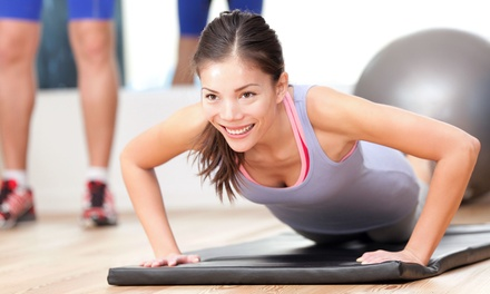 Three or Six Personal-Training Sessions at Survival Fitness (Up to 77% Off)