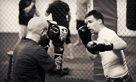 One or Three Months of Mixed Martial-Arts Classes at Platinum Mixed Martial Arts (Up to 61% Off)