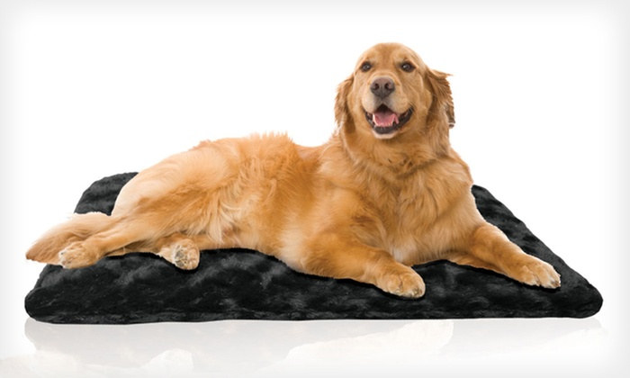Orthopedic Foam Pet Mat: Orthopedic Foam Pet Mats (Up to 44% Off). 12 Options Available. Free Shipping on Purchases Over $15. Free Returns.