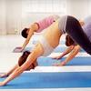 61% Off at Yoga Bug