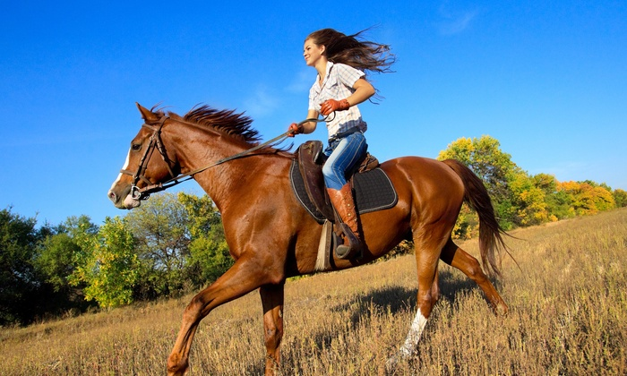 Gold Rush Farms - Easton: $1 Buys You a Coupon for 10% Off Horseback Trail Riding And Lessons at Gold Rush Farms