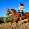 $1 Buys You a Coupon for 10% Off Horseback Trail Riding And Lessons