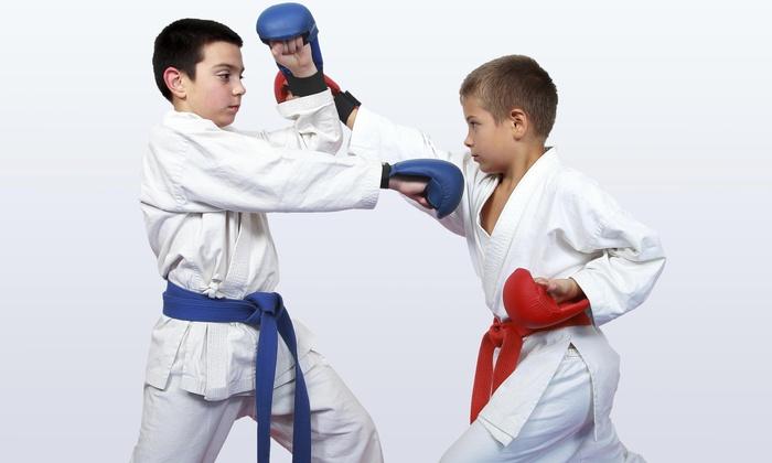 Aka Mma &fitness - Arlington: Four Weeks of Unlimited Martial Arts Classes at AKA MMA &Fitness (60% Off)
