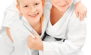 NTA Taekwondo: Four or Eight Tae Kwon Do Classes at NTA Taekwondo (Up to 66% Off)