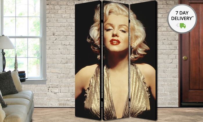 70''x48'' Artistic Room Divider: 70''x48'' Artistic Folding Room Dividers. Multiple Screens Available. Free Returns.
