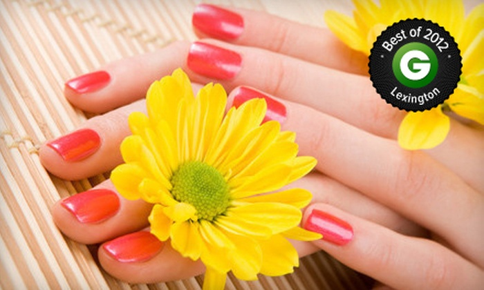 Teresa Belle Nail Salon - Lexington-Fayette: One or Two Shellac Manicure and Regular Pedicure Packages at Teresa Belle Nail Salon (Up to 61% Off)