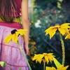 Milwaukee Urban Gardens – Up to 72% Off Harvest Gala