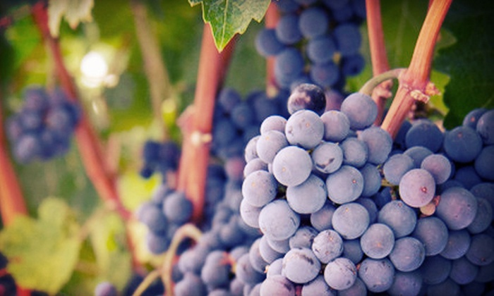 Jazz'n the Vines - Baton Rouge: Winery-Concert Package for Two or Four at Pontchartrain Vineyards (Up to 56% Off)
