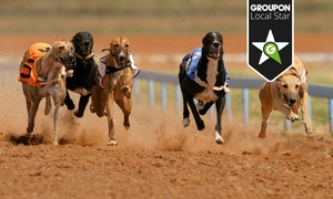 Harlow Greyhound Stadium (GBGB): Greyhound Race Nights from £12 With Meal and Drinks at Harlow Greyhound Stadium (Up to 70% Off)