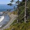 Spacious Condos on Washington Coast