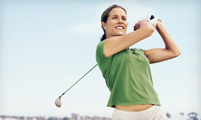 The Aqua Golf Driving Range - Hallandale: 30- or 60-Minute Golf Lesson at The Aqua Golf Driving Range (Up to 68% Off)