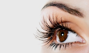 Solstice Salon & Spa: Full Set of Eyelash Extensions with Optional Two-Week Fill at Solstice Salon & Spa (Up to 68% Off)