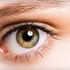 73% Off Eye Exam and Eyewear