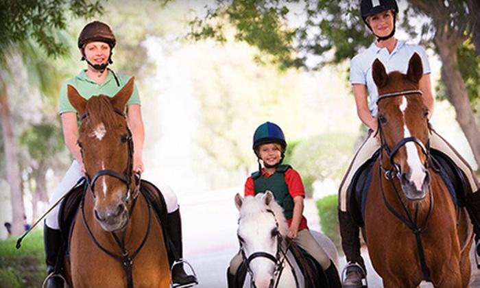 Rancho La Rosa - Alvarado: One, Three, or Five Private, One-Hour Horseback-Riding Lessons at Rancho La Rosa (Up to 60% Off)