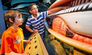 Bow Habitat Station: Discovery Centre Visit for Two Adults or a Family at Bow Habitat Station (Up to 50% Off)