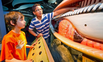 Discovery Centre Visit for Two Adults or a Family at Bow Habitat Station (Up to 50% Off)