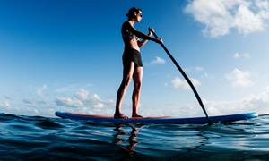 Siesta Key Paddleboards: Paddleboard Lesson with One or Two Hours of Paddling for One or Two at Siesta Key Paddleboards (Up to 74% Off)