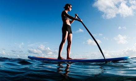 Paddleboard Lesson with One or Two Hours of Paddling for One or Two at Siesta Key Paddleboards (Up to 68% Off)