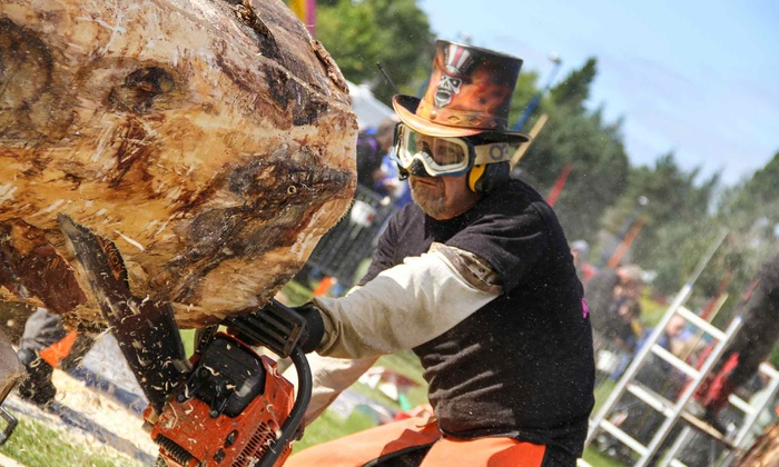 Ellijay Marketplace - Ellijay: Chainsaw Carving Showdown Tickets for One, Two, or Four on October 25–26 at Ellijay Marketplace (Up to 51% Off)