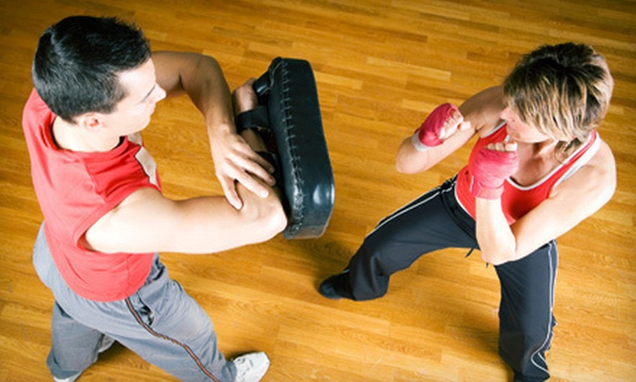 WNY Mixed Martial Arts & Fitness - Park Meadow: Adult MMA, One Month of Women's Fitness, or Kid's MMA Classes at WNY Mixed Martial Arts & Fitness (Up to 85% Off)