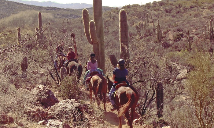 Bandit Outfitters - Tucson: 90-Minute Horseback Trail Ride for Two, Four, or Eight from Bandit Outfitters (Up to 51% Off)