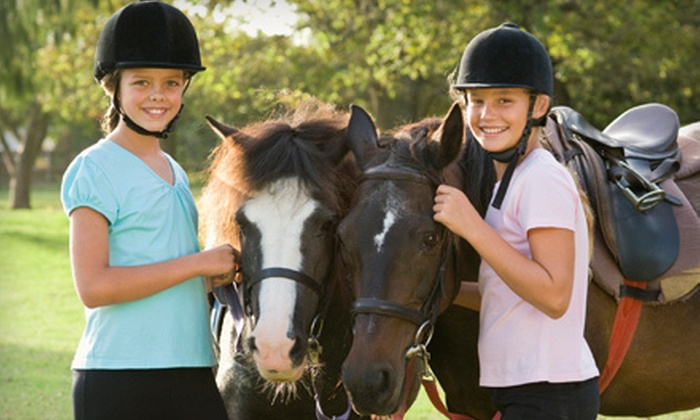 Dublin Fields Farm - Foley: One or Three Group Riding Lessons, or Horsemanship Clinic with Riding Lesson at Dublin Fields Farm (Up to 70% Off)