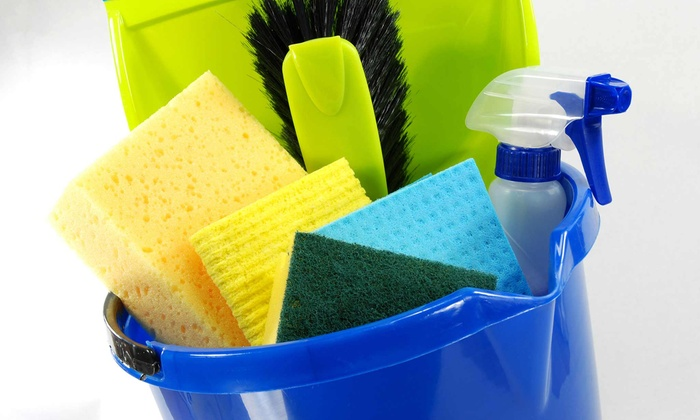 Vividly Clean - Minneapolis / St Paul: Three Housecleaning Sessions from Vividly Clean (60% Off).