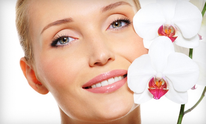 Nourishe Anti-Aging & Skin Rejuvenation Clinic - Delray Beach: One or Three Custom Dreamtime Spa Facials at Nourishe Anti-Aging & Skin Rejuvenation Clinic (Up to 58% Off)