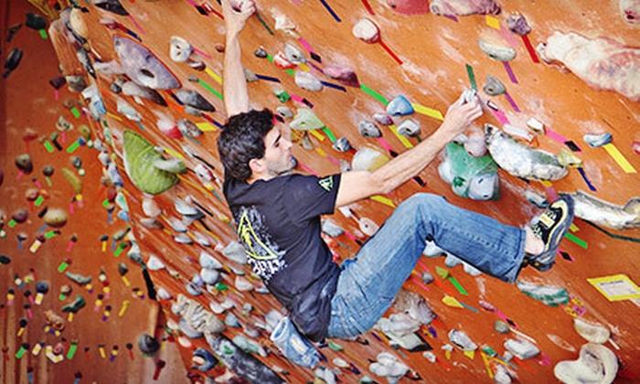 Rocknasium - Rocknasium: Rock-Climbing Day Pass with Basic Belay Class, Seven-Visit Pass, or Family Membership at Rocknasium (Up to 51% Off)